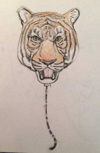 tigerballoonstudy